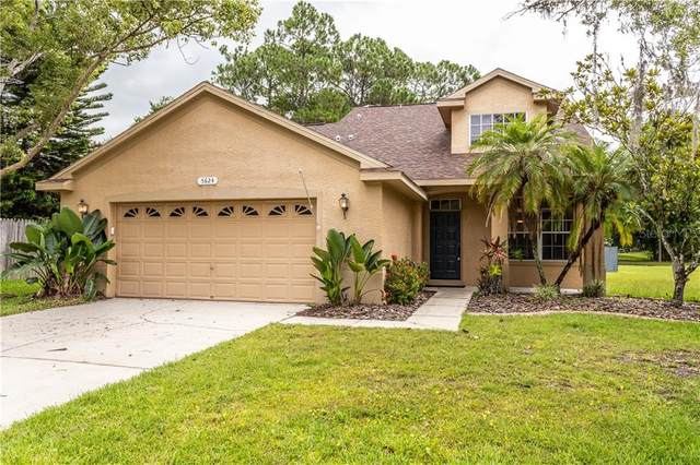 5624 Essex Court, Palm Harbor, FL 34685 (MLS #W7824568) :: Your Florida House Team