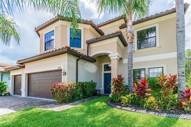 19091 Umberland Place, Land O Lakes, FL 34638 (MLS #W7824593) :: BuySellLiveFlorida.com