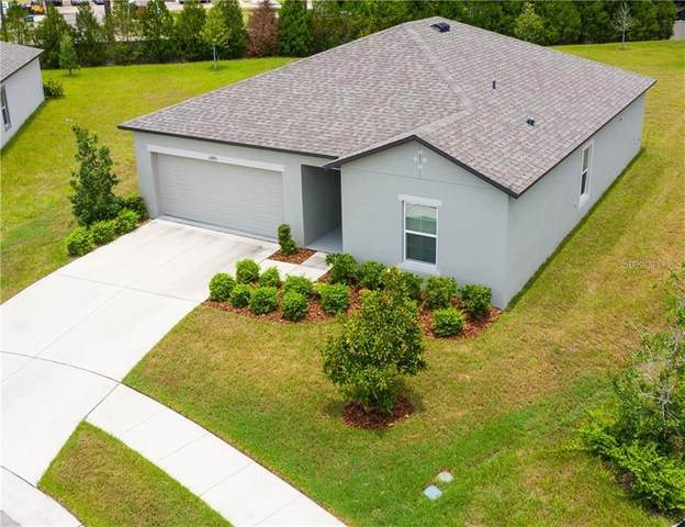 12490 Chaya Court, Spring Hill, FL 34610 (MLS #W7824611) :: Cartwright Realty