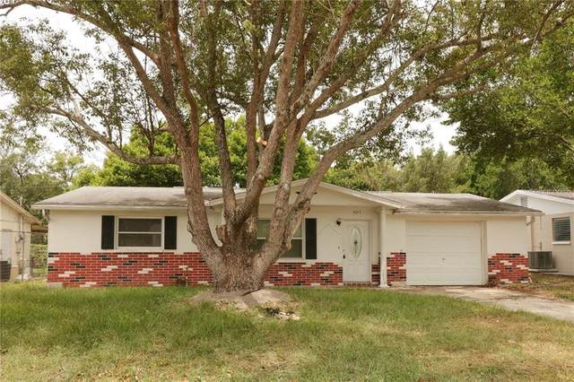 5017 Thames Drive, New Port Richey, FL 34652 (MLS #W7824630) :: Bustamante Real Estate
