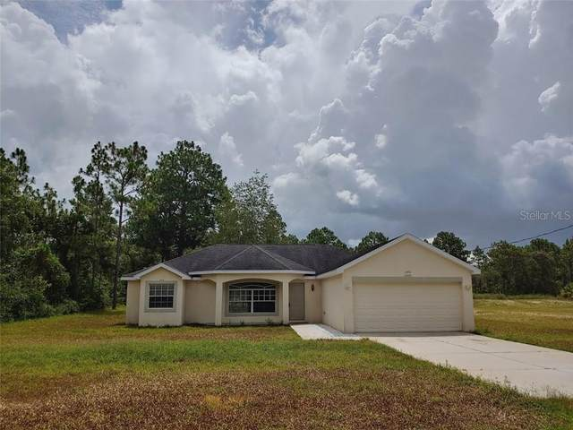 13476 Flemington Road, Weeki Wachee, FL 34614 (MLS #W7824633) :: Premier Home Experts