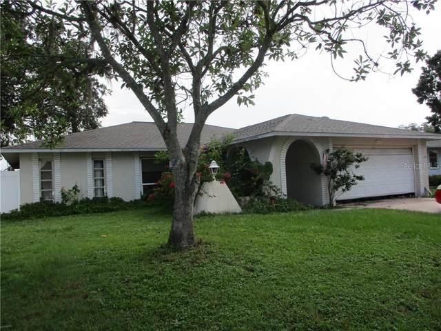 8217 Fishhawk Avenue, New Port Richey, FL 34653 (MLS #W7824639) :: Burwell Real Estate