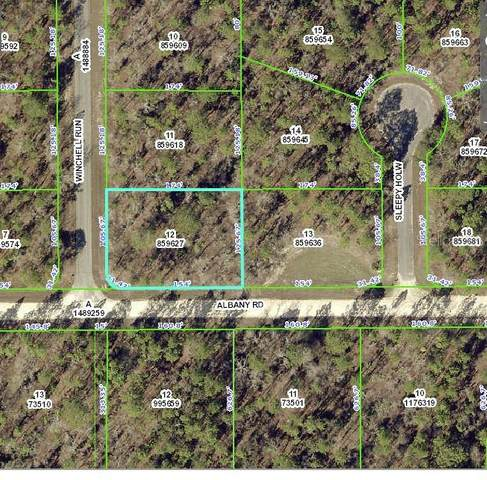 13243 Albany Road, Weeki Wachee, FL 34614 (MLS #W7824654) :: Rabell Realty Group