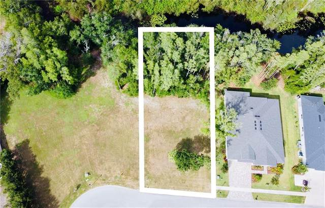 4012 Cove Lake Place, Land O Lakes, FL 34639 (MLS #W7824664) :: GO Realty