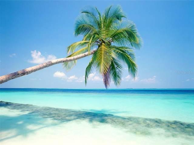 8737 Bermuda Lane, Port Richey, FL 34668 (MLS #W7824700) :: Burwell Real Estate