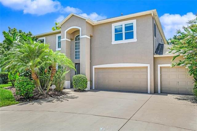 3103 Ashmonte Drive, Land O Lakes, FL 34638 (MLS #W7824704) :: Rabell Realty Group