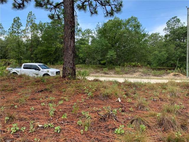 18384 Retriever Road, Weeki Wachee, FL 34614 (MLS #W7824754) :: Premium Properties Real Estate Services