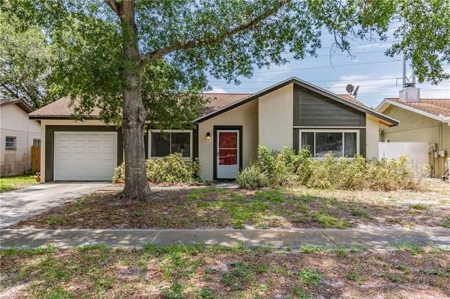 1882 Citrus Hill Lane, Palm Harbor, FL 34683 (MLS #W7824774) :: Heart & Home Group