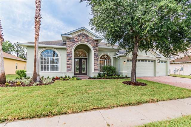 21523 Draycott Way, Land O Lakes, FL 34637 (MLS #W7824779) :: Rabell Realty Group