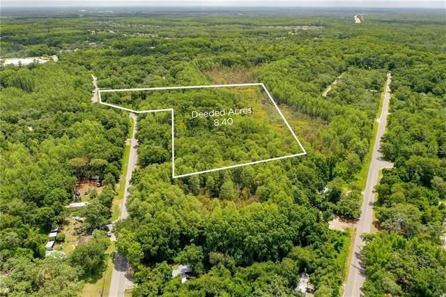 11780 Key Lime Drive, New Port Richey, FL 34654 (MLS #W7824800) :: Baird Realty Group