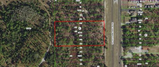 8874 S Suncoast Boulevard, Homosassa, FL 34446 (MLS #W7824942) :: Rabell Realty Group