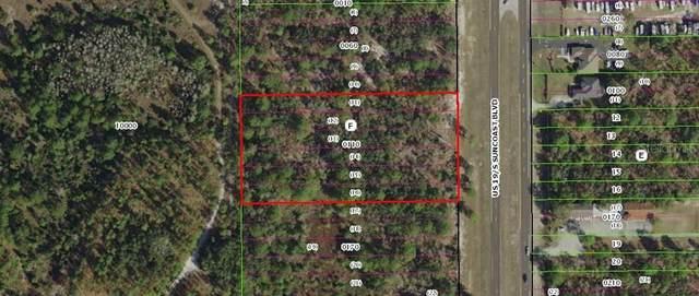 8874 S Suncoast Boulevard, Homosassa, FL 34446 (MLS #W7824942) :: Bustamante Real Estate