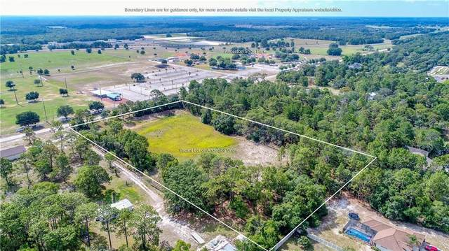 2001 Anderson Snow Road, Spring Hill, FL 34609 (MLS #W7825158) :: The Duncan Duo Team