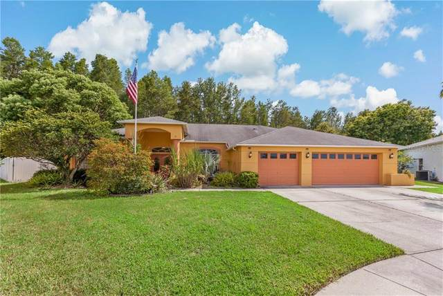 8446 Siamang Court, New Port Richey, FL 34653 (MLS #W7825195) :: Premier Home Experts