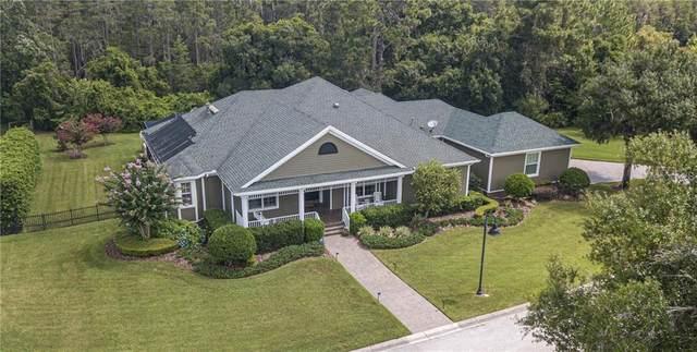 3815 Wiregrass Road, New Port Richey, FL 34655 (MLS #W7825225) :: Premier Home Experts