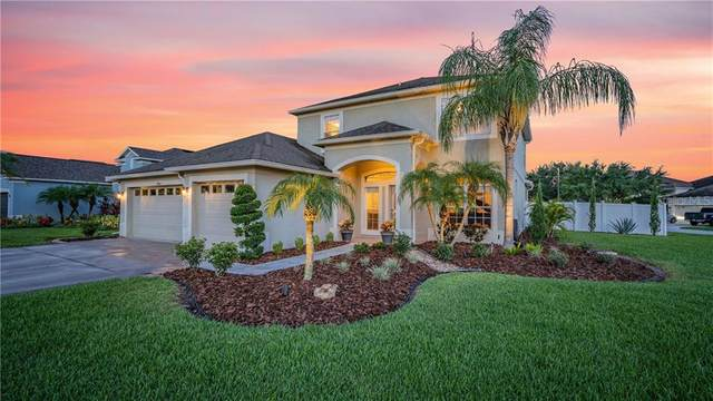 19046 Beatrice Lane, Land O Lakes, FL 34638 (MLS #W7825229) :: Baird Realty Group