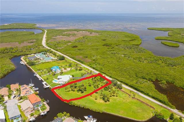 6 Green Key Road, New Port Richey, FL 34652 (MLS #W7825242) :: The Lersch Group
