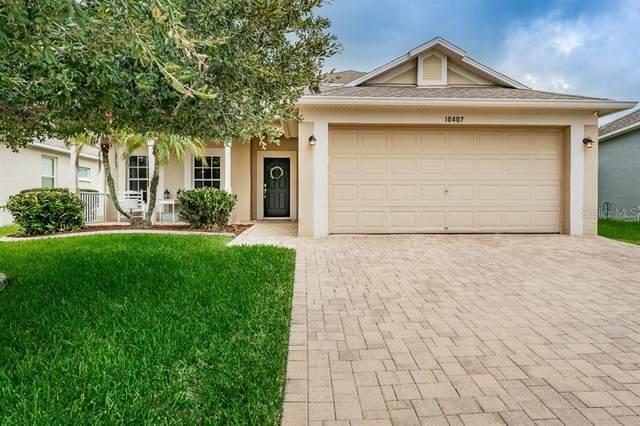 10407 Tecoma Drive, Trinity, FL 34655 (MLS #W7825284) :: Griffin Group