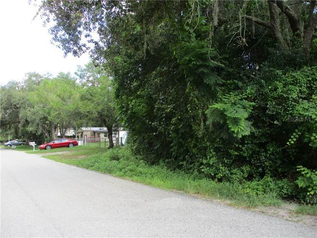 12201 Lamont Avenue, New Port Richey, FL 34654 (MLS #W7825308) :: Bustamante Real Estate