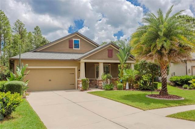 8535 May Port Court, Land O Lakes, FL 34638 (MLS #W7825341) :: Team Bohannon Keller Williams, Tampa Properties