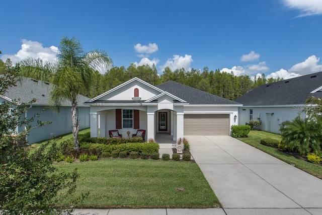 14426 Trails Edge Boulevard, Odessa, FL 33556 (MLS #W7825364) :: Cartwright Realty