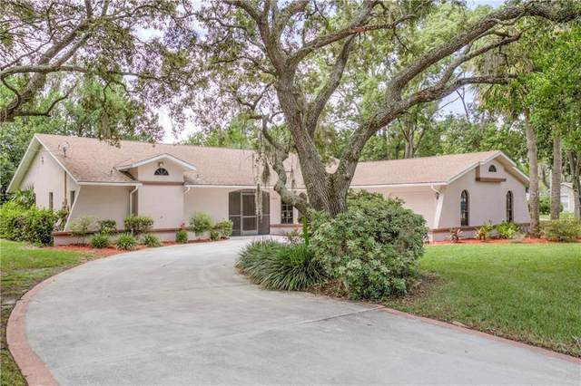 8409 Tranquil Drive, Spring Hill, FL 34606 (MLS #W7825370) :: The Duncan Duo Team