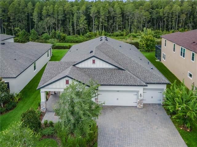 13376 Batten Lane, Odessa, FL 33556 (MLS #W7825378) :: Premier Home Experts