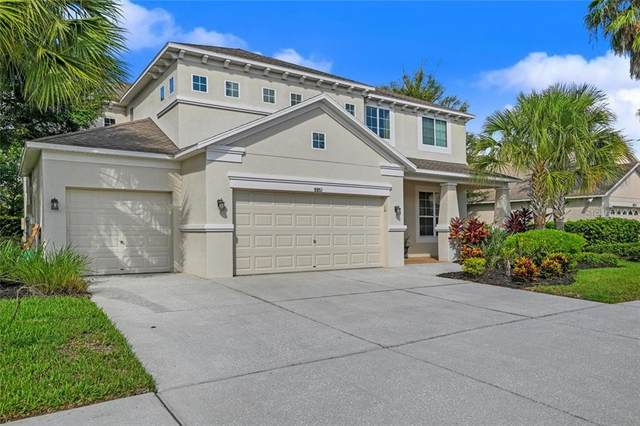 9851 Asbel Estates Street, Land O Lakes, FL 34638 (MLS #W7825394) :: Team Bohannon Keller Williams, Tampa Properties
