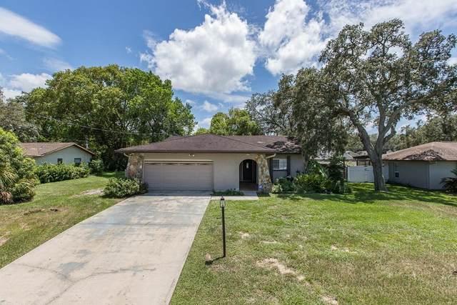 9032 Blackstone Street, Spring Hill, FL 34608 (MLS #W7825434) :: Dalton Wade Real Estate Group
