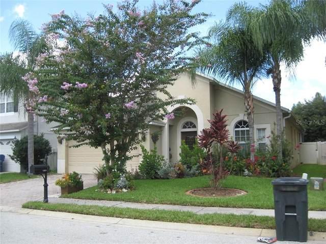12831 S Solola Way, Trinity, FL 34655 (MLS #W7825439) :: The Light Team