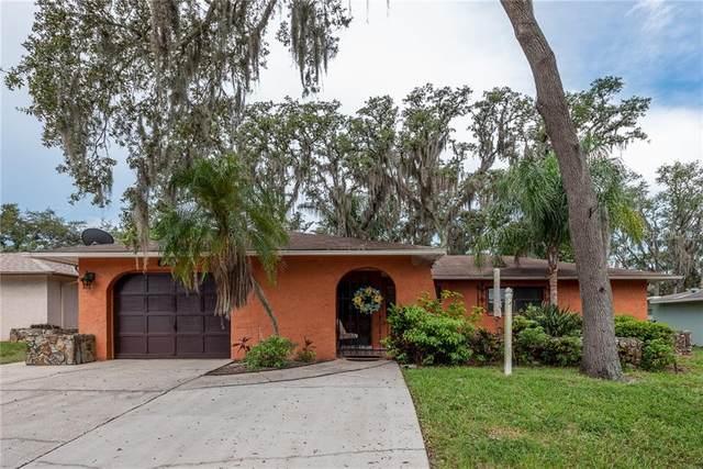 8801 Elm Leaf Court, Port Richey, FL 34668 (MLS #W7825442) :: Team Bohannon Keller Williams, Tampa Properties