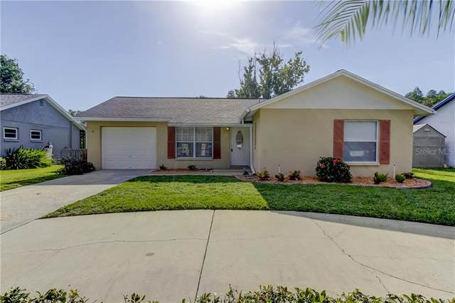 3610 Hartland Drive, New Port Richey, FL 34655 (MLS #W7825446) :: The Duncan Duo Team