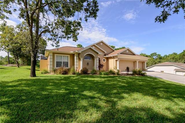 10464 Calico Warbler Avenue, Weeki Wachee, FL 34613 (MLS #W7825450) :: Griffin Group