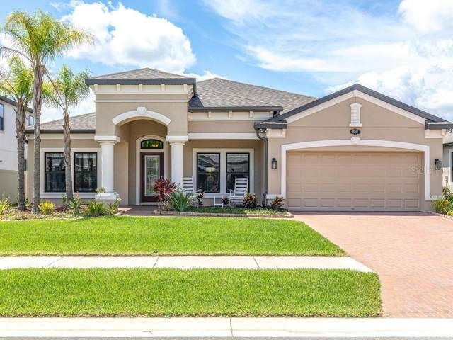 18244 Roseate Drive, Lutz, FL 33558 (MLS #W7825497) :: Baird Realty Group