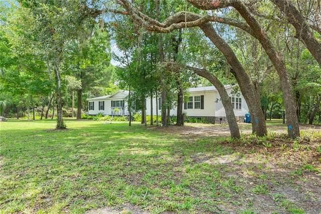 8174 Darts Street, Weeki Wachee, FL 34613 (MLS #W7825528) :: Griffin Group