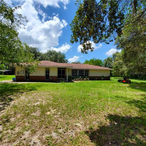 13402 Peace Boulevard, Spring Hill, FL 34610 (MLS #W7825541) :: Griffin Group