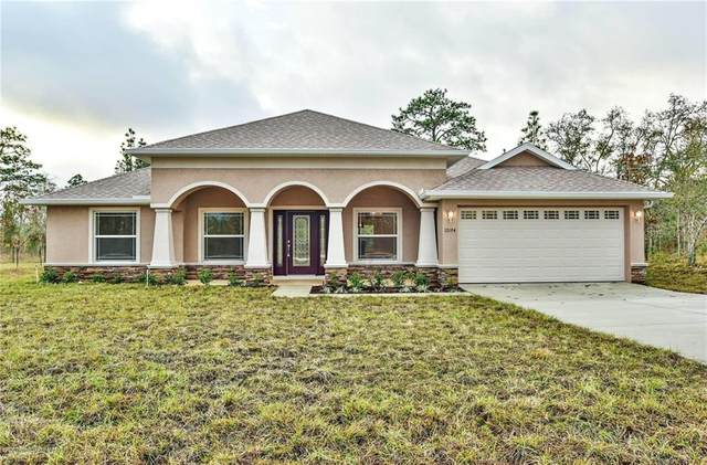 11181 Riddle Drive, Spring Hill, FL 34609 (MLS #W7825555) :: Premium Properties Real Estate Services