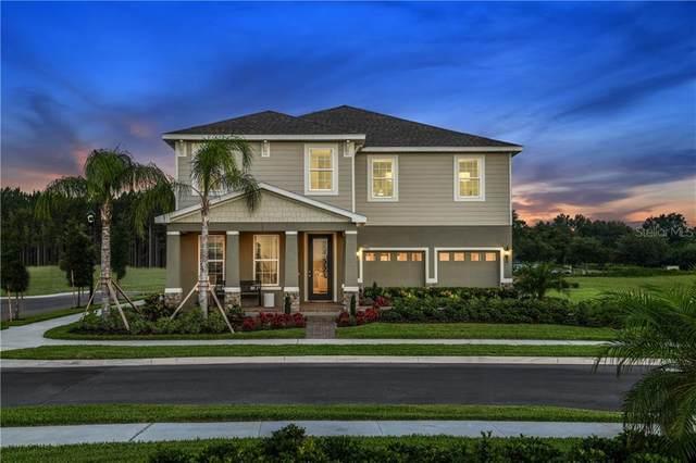 48 Kiwano Way, Windermere, FL 34786 (MLS #W7825592) :: Florida Real Estate Sellers at Keller Williams Realty