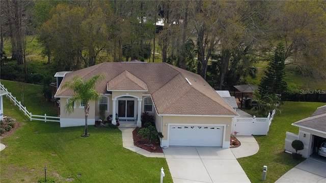7632 Duck Lane, New Port Richey, FL 34653 (MLS #W7825595) :: Baird Realty Group