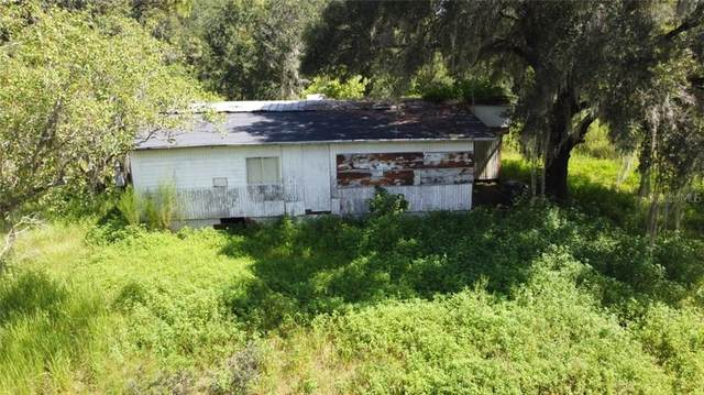 303 Wildlife Trail, Lakeland, FL 33809 (MLS #W7825615) :: Mark and Joni Coulter | Better Homes and Gardens