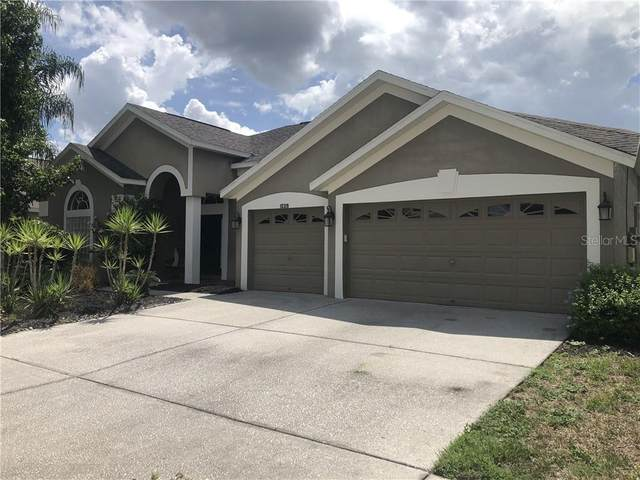 10319 Meadow Crossing Drive, Tampa, FL 33647 (MLS #W7825618) :: Ramos Professionals Group