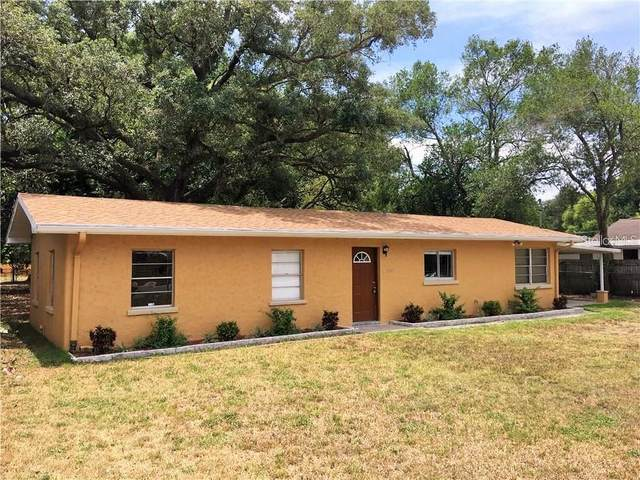 38600 Alston Avenue, Zephyrhills, FL 33542 (MLS #W7825619) :: Cartwright Realty