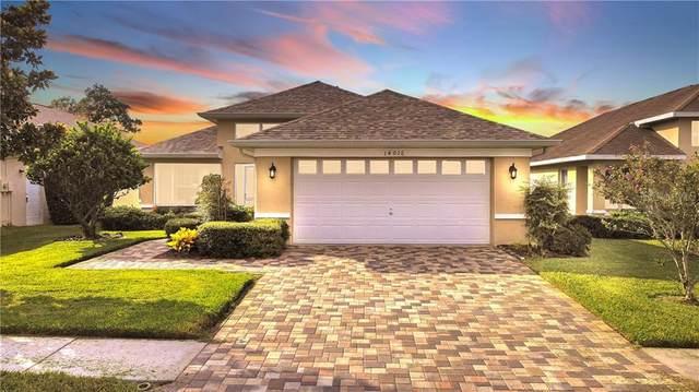 14016 Shoal Drive, Hudson, FL 34667 (MLS #W7825625) :: McConnell and Associates