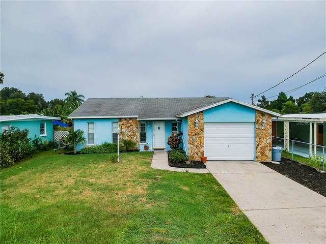 13612 Frances Avenue, Hudson, FL 34667 (MLS #W7825672) :: Rabell Realty Group