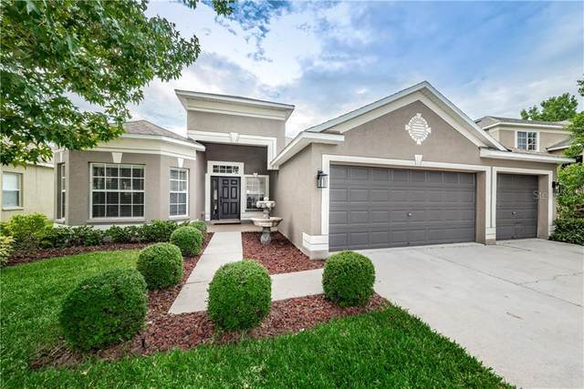 1523 Amaryllis Court, Trinity, FL 34655 (MLS #W7825711) :: The Figueroa Team