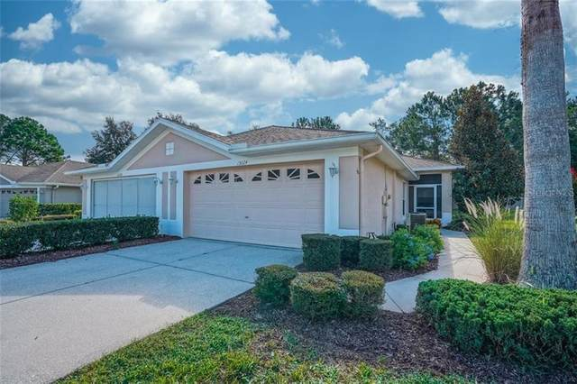 15024 Silversmith Circle, Spring Hill, FL 34609 (MLS #W7825730) :: Your Florida House Team