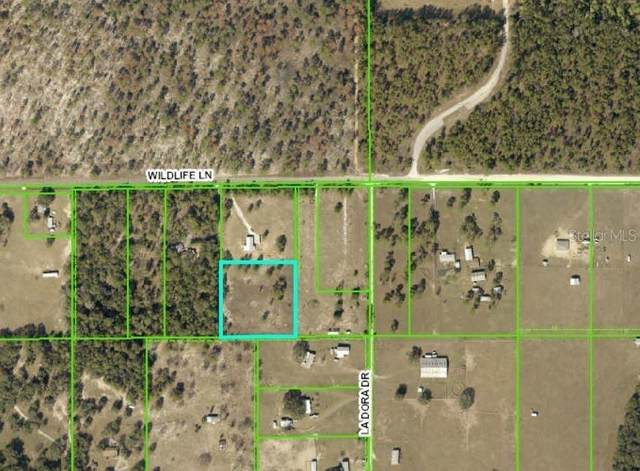 0 Wildlife Lane, Brooksville, FL 34602 (MLS #W7825772) :: Pristine Properties