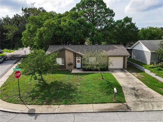 12401 Parchment Drive, Hudson, FL 34667 (MLS #W7825876) :: CENTURY 21 OneBlue