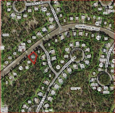 31 Corkwood Boulevard, Homosassa, FL 34446 (MLS #W7826466) :: Rabell Realty Group