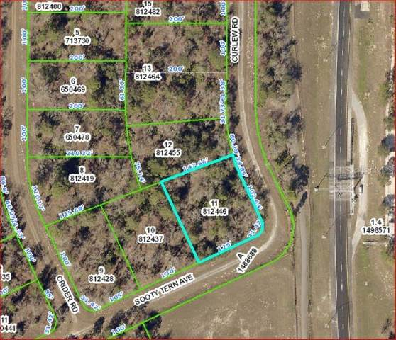0 Sooty Tern Avenue, Weeki Wachee, FL 34614 (MLS #W7826481) :: Alpha Equity Team